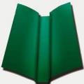 Конёк Ендова (зелёный)